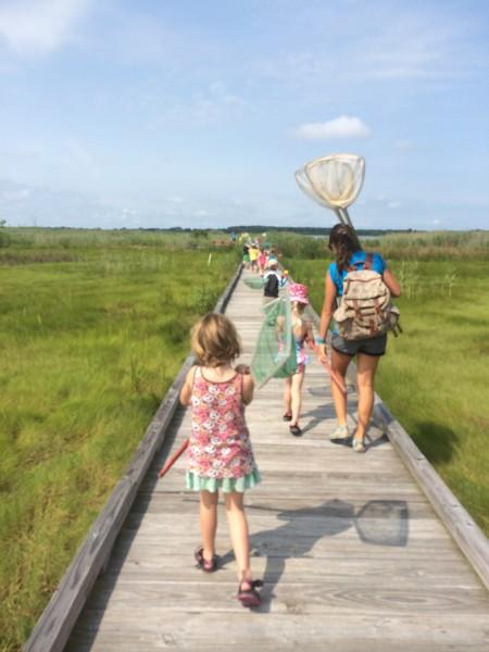 Summer camp walk to bay