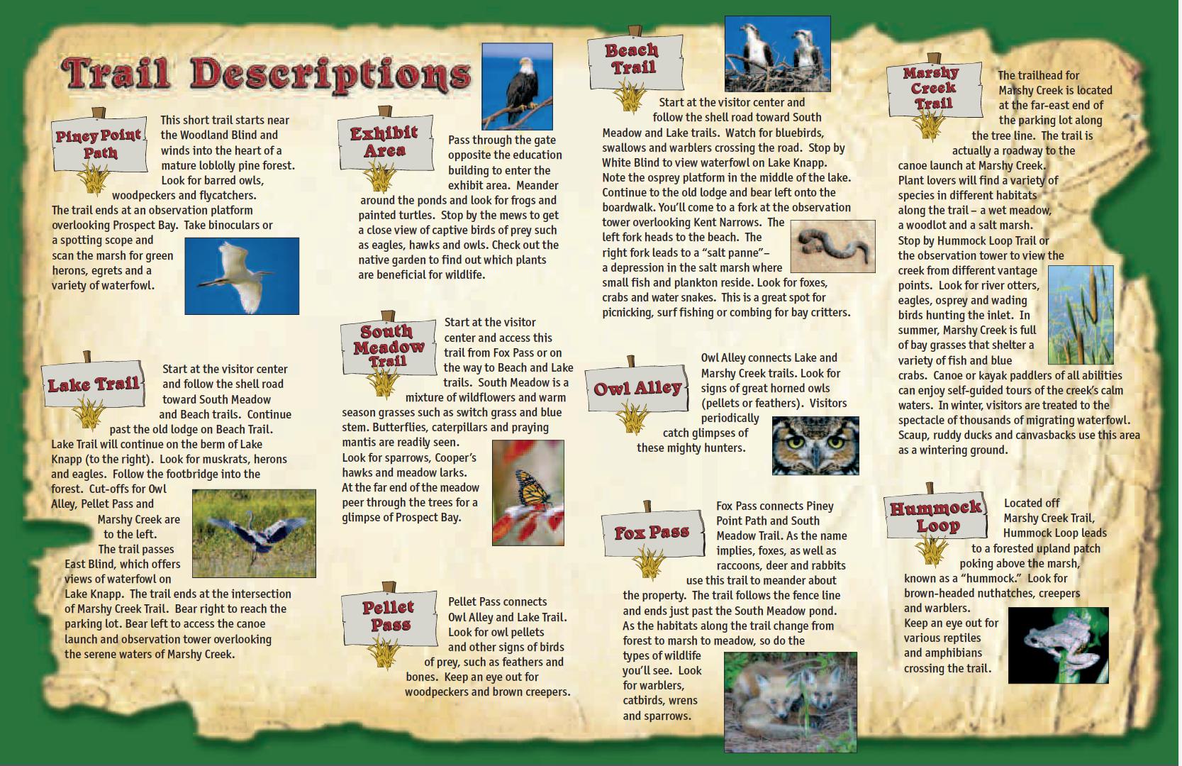 trial_descriptions
