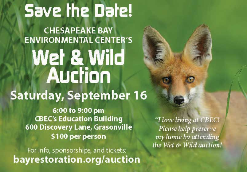 Save the Date for Wet & wild Auction