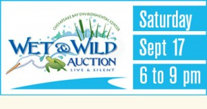 Wet & Wild Auction Art