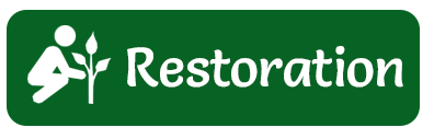 Restoration button