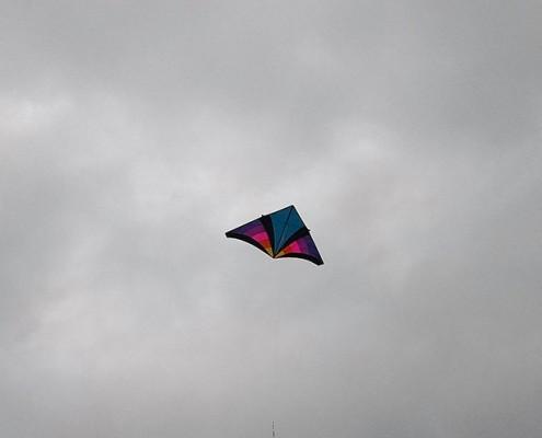 Delta 7 kite