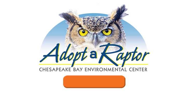 adopt-a-raptor slide
